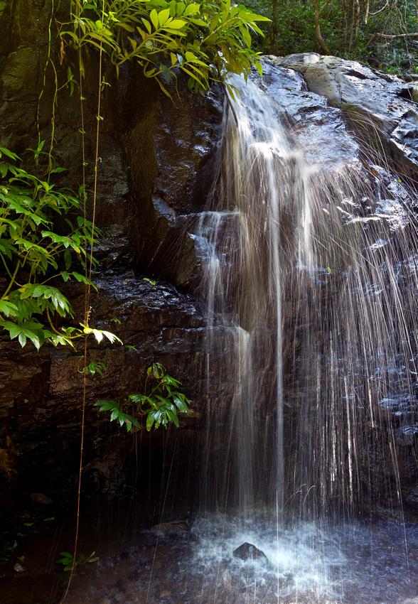 IMAGE: http://hardlightimages.zenfolio.com/img/s1/v48/p164684265-5.jpg